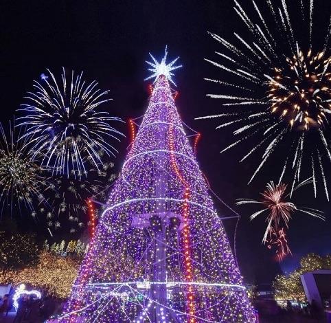 備北丘陵公園イルミネーションと花火の画像