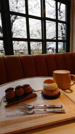 中目黒カフェからの桜の画像