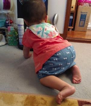 赤ちゃんの夏服(半そで+ショートパンツ)